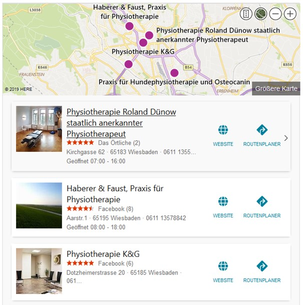 Bing Places Serps